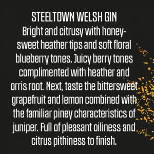 Steeltown Welsh Blueberry Gin (Pre-Orders)
