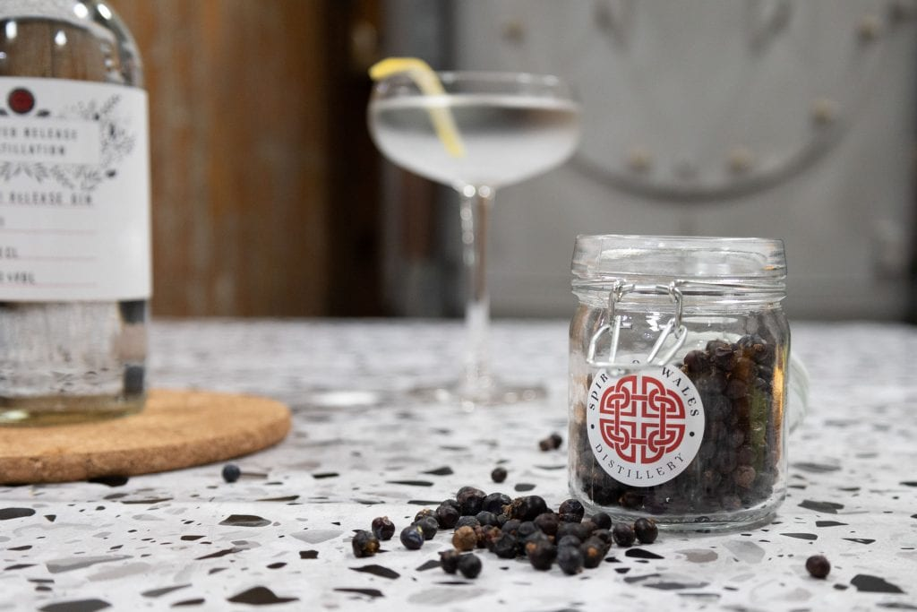 Spirit of Wales Distillery Limited Release gin used to make cocktails this World Martini Day