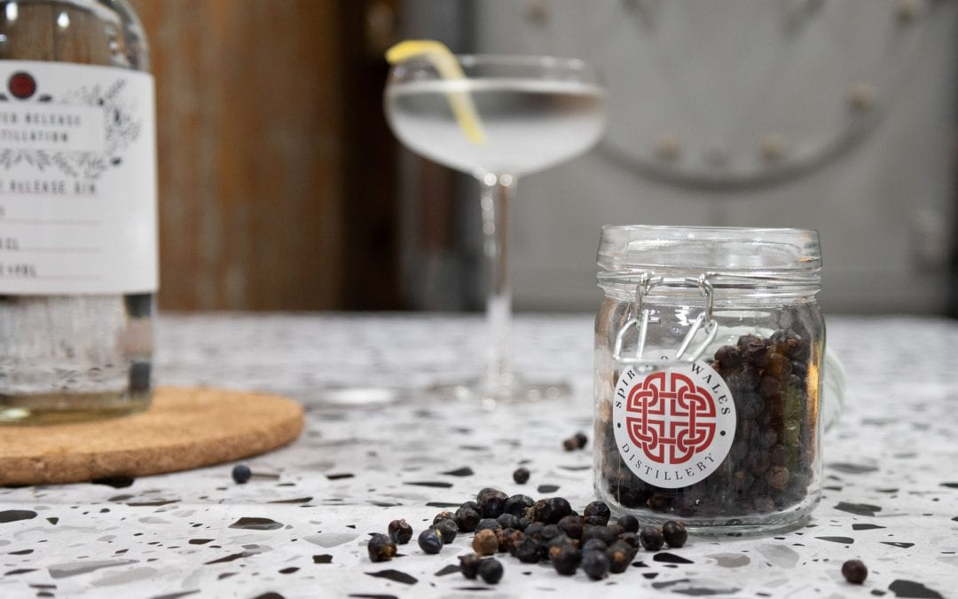 World Martini Day with the Spirit of Wales Distillery