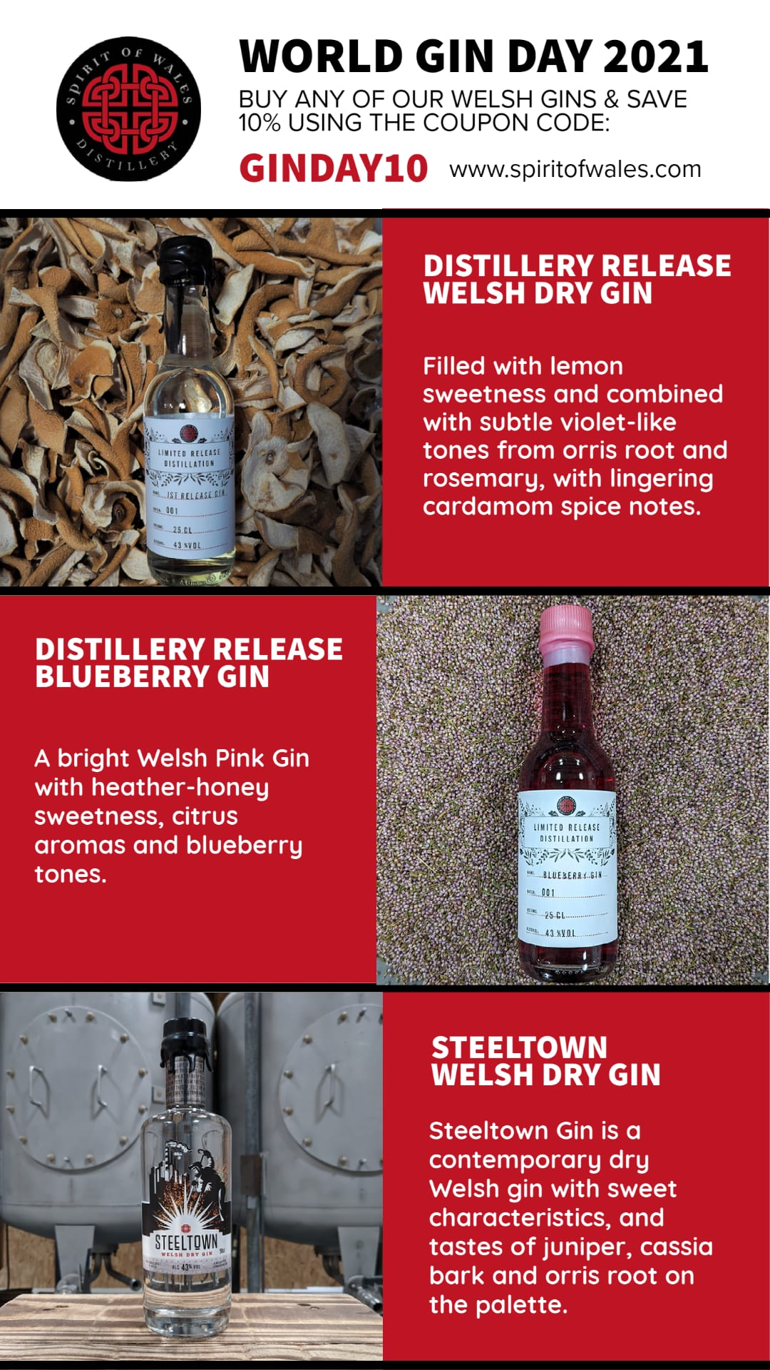 Infographic - World Gin Day Deals from the Spirit of Wales Distillery